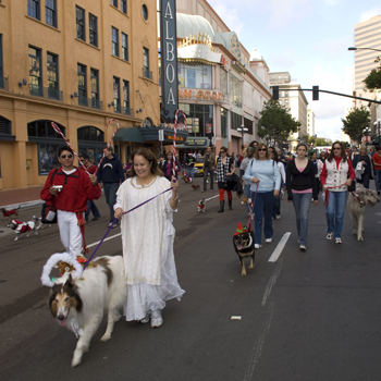 Pet-Parade-3 gaslamp san diego