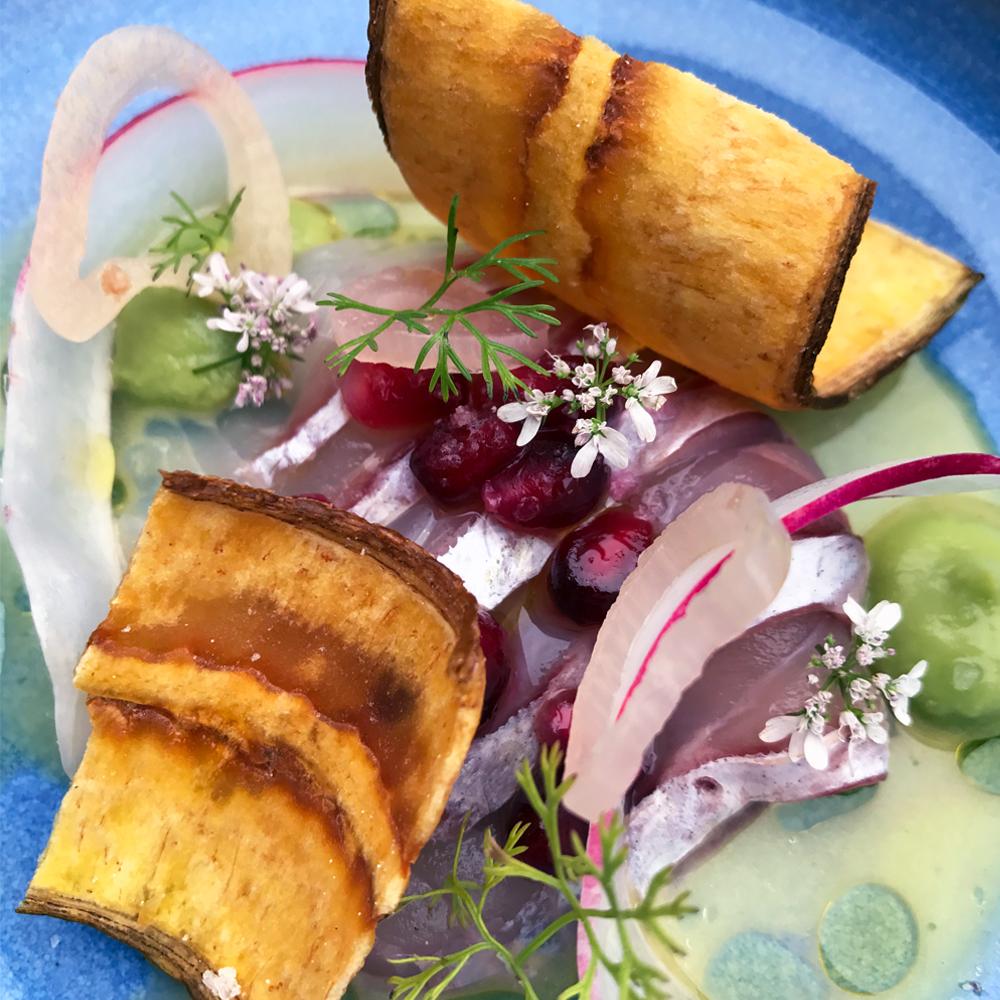downtown san diego gaslamp quarter taste of gaslamp Lionfish modern coastal cuisine