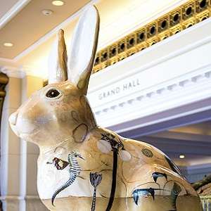 grandhyatt-rabbitville-forderer3-lowres-300-x-300-2 gaslamp san diego