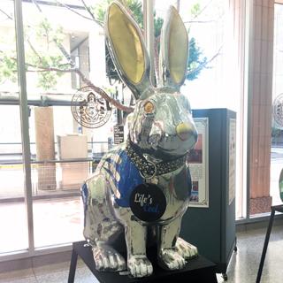 Rabbitville-Pacific gaslamp san diego