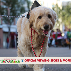 Pet-Parade-View-Locations-300x300 gaslamp san diego