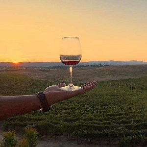wine-membership-at-Calaway-Winery-300-x-300 gaslamp san diego